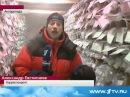 Русское Золото в Антарктике