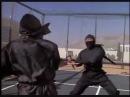 Revenge of The Ninja: Final Ninja Fight