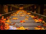 Мишель  Легран (Саксофон)-Michel Legrand   - Чудесная осенняя природа! Невероятно красивая музыка!