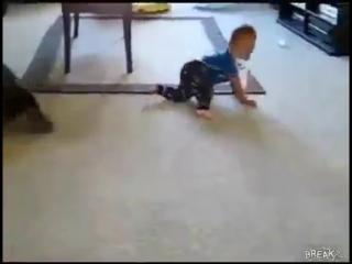 Гавкающая собака и смеющийся малыш=)))) Приколы с детьми и животными 2014