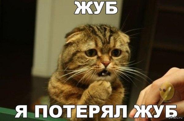 Вампирская — СЛОТ Слушать онлайн на Яндекс Музыке