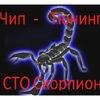 Сто Скорпион