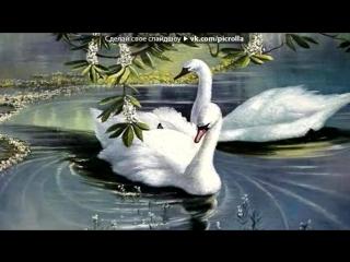 «Лебеди...» под музыку Группа Весна - Белые Крылья Любви. Picrolla