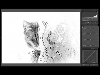 Learn #Lightroom 5 - Episode 50: Basic Panel & Tone Curve Differences\\оп