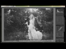 Lightroom Tutorial B W Matte Tone Curve and Black and White Mix