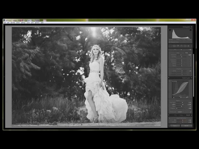Lightroom Tutorial BW Matte | Tone Curve and Black and White Mix
