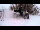 ATV Belgorod (АТВ Клуб Чернозём) Yamaha, BRP, CF, Baltmotors, SYM.