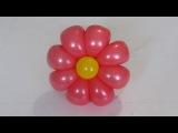 ромашка 8 лепестков из шаров 8-petals flower balloon (Subtitles)