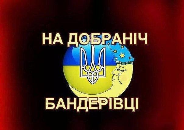 НАТО не обещало России не расширяться, - замгенсека Вершбоу - Цензор.НЕТ 1601