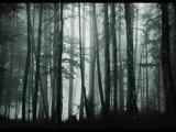 Adiemus &amp Karl Jenkins - Song Of Tears
