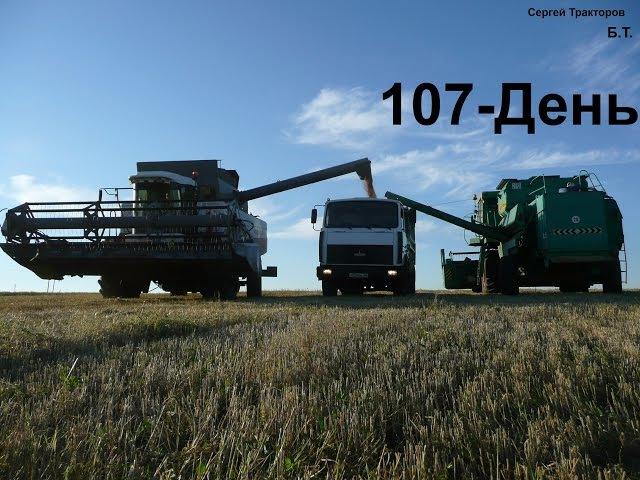 107-Д.Начало уборки! Работаю на МАЗ-5551,вывоз зерна из под комбайнов ДОН-1500Б,Акрос-530