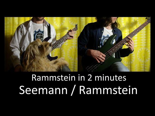 10) Rammstein - Seemann / Rammstein (Bass Guitar lesson TAB   Cover HD)