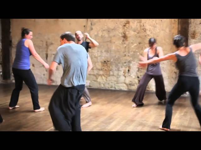 5Rhythms dance montage (Paris July 2014) produced by Shaping the Invisible
