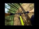 Riding Cwmcarn XC trails - Twrch and Cafell on a Bird Zero AM