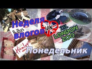 Неделя ВЛОГОВ путешествие по Великобритании. Понедельник: Лондон. London Zoo, Hamleys, Abbey Road