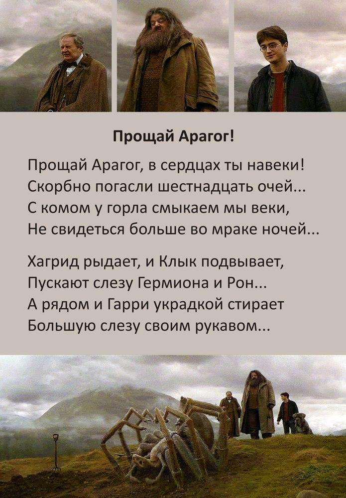 http://cs623819.vk.me/v623819266/3320f/fJO-olSOaUU.jpg