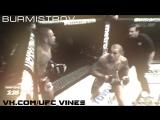 UFC KO |UFC VINES|