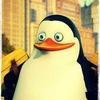 пингвины из steam