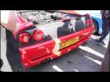 Ferrari 355 Berlinetta startup REVS !