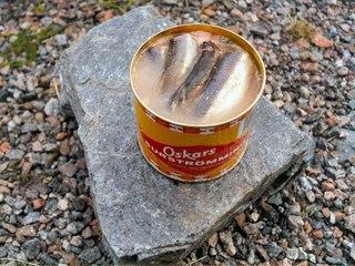 Фото рецепта: Сюрстрёмминг (Surstromming) - шведская квашенная сельдь