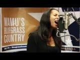 Carolina Chocolate Drops - No Man's Mama Live at WAMU's Bluegrass Country