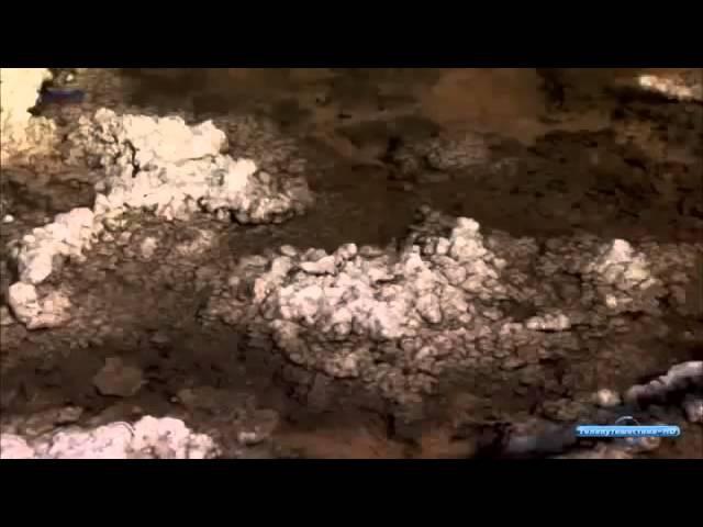 В мире дикой природы Долина смерти документальный фильм