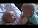 Twins Merle and Stijn talking to each other oftewel: Stijn en Merle babbelen er op los!