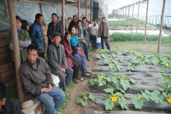 ‼ осторожно: ядовитые товары и «продукты питания» произведенные китайцами ‼