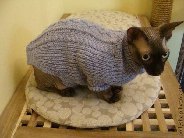Вязанная кофта для кота