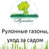 Лужайка( рулонные газоны) Днепропетровск