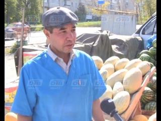 Мужчина похитил две дыни, пригрозив продавцам пневматическим пистолетом
