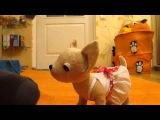 Видеообзор мягкой игрушки собачка