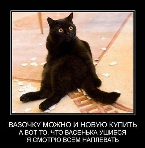 http://cs623824.vk.me/v623824339/3b566/8sYVZ4RVSHI.jpg