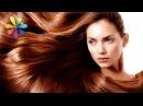 Как подобрать оттенок волос по цветотипу лица Все буде добре Выпуск 676 от 24 09 15