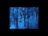 Dark Ambient - Vinterriket Book - Im Antlitz der Ferne - Impressionen eines Wanderers III - preview