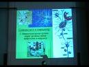 Принципы передачи информации в нервной системе Дубынин В А