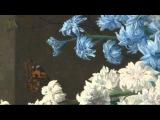 G. Ph. Telemann TWV 51G4  Concerto for violin, strings &amp b.c. in G major  Pratum Integrum