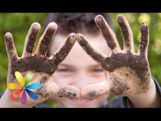 Как привить ребенку чистоплотность - Все буде добре - Выпуск 474 - 07.10.2014 - Все будет хорошо