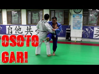 Осото Гари (отхват). Osoto Gari by 7th Dan Korean Master (밭다리후리기)