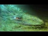 Makyo Swords - Video mixed by Danne_mk