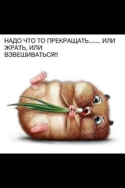 фото из альбома Kseniya Kiseleva №4
