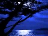 Nessun Dorma - BBC Concert Orchestra (Turandot Act 3)