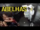 PEGADINHA ABELHAS Bees Prank