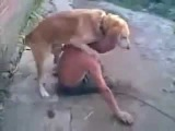Собака трахает алкаша и в хвост и в гриву:)))