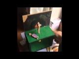 Детская дрочилка с маньяком - Пища и музыка