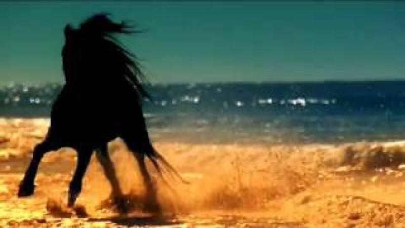 Небесная сказка о арабской девушке и коне Красивая музыка