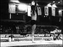 Спортивная гимнастика  Мужчины  Размышления    Перспективы