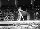 Спортивная гимнастика  Женщины  Размышления    Перспективы