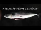Как разделывать рыбу Видео урок Разделка Рыбы