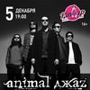 ANIMAL ДЖАZ В МУРМАНСКЕ ██ 05.12.15 ██ PIN